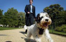 London, United Kingdom, September 9, 2004 Nominee Commissioner Peter Mandelson Jan van de VEl©EC-CE