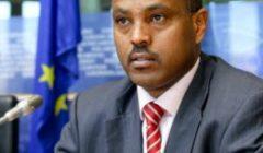 Le Somaliland indépendant demande sa reconnaissance par l'UE