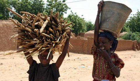 La crise alimentaire au Sahel, conférence de haut-niveau à Bruxelles