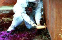 Syrie. Des preuves d'armes chimiques. «Toutes les options sont sur la table» (Fabius) (Maj)
