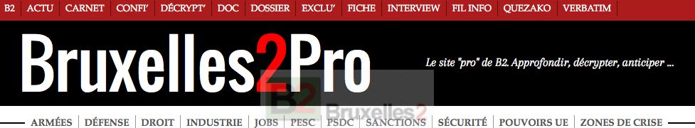 Logo Entete B2 ProClub 2015