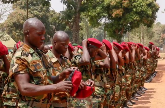 Centrafrique. Un premier détachement d'anciens rebelles réintégré
