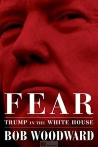 Trump : la compréhension d'un gamin de cinq ou six ans (Mattis)